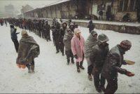 emergenza freddo rifugiati belgrado