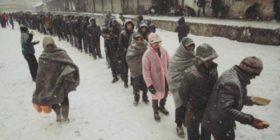 One Bridge to Idomeni: emergenza rifugiati a Belgrado