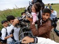 Mai-cosi-tante-richieste-d-asilo-e-il-muro-ungherese-spinge-i-migranti-verso-il-Friuli_articleimage