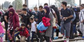 D.L. migranti, ANM chiede un giudizio di merito pieno ed effettivo