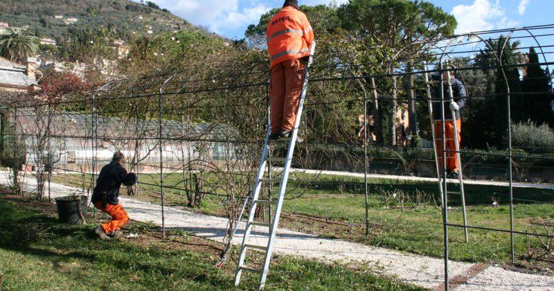 Bando per apprendisti giardinieri a Genova? Si! Anche se cittadini stranieri
