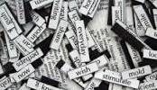 """Marino: basta """"nomadi"""" nei documenti amministrativi. L'importanza delle parole."""