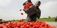 Pubblicato sulla Gazzetta Ufficiale il decreto flussi