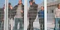 Gradisca d'Isonzo: il prezzo della disinformazione