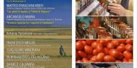 La Filiera non Etica: dai campi ai supermercati