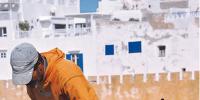 Essaouira, Marocco. Una città, i suoi gatti e la convivenza