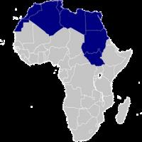 migranti stuprate in libia