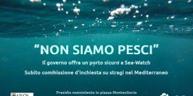 Non siamo pesci: presidio nonviolento in piazza Montecitorio