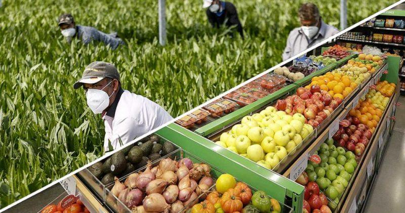 Sciopero dei braccianti: non compriamo frutta e verdura al supermercato